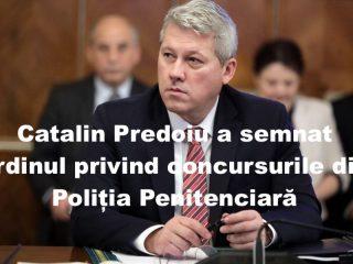 Catalin-Predoiu-1-1-960x600