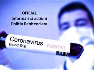 Corona - info